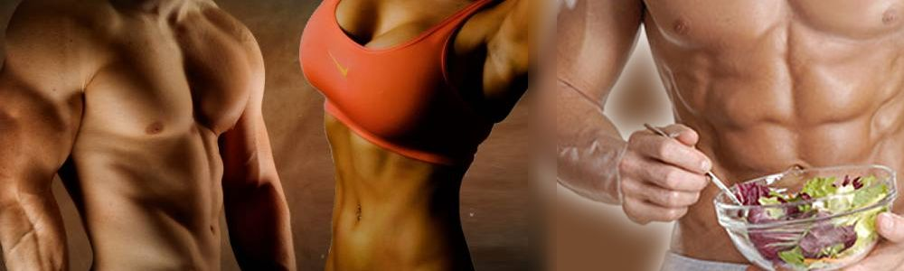 fat loss guidelines